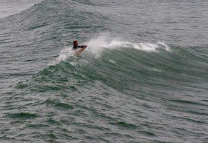 surfing freedom